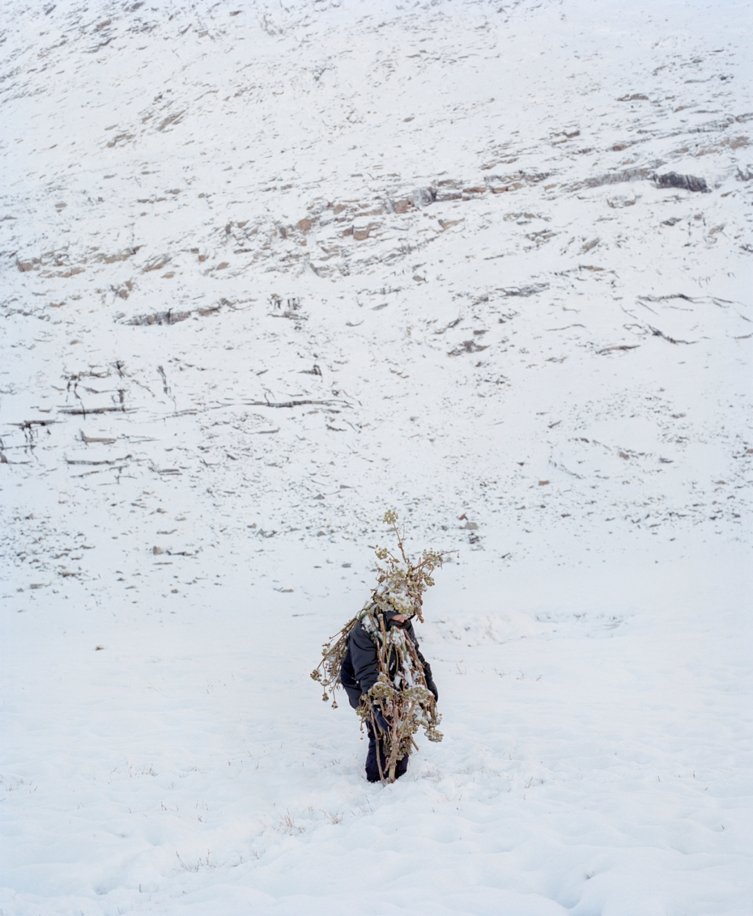 Eyes as Big as Plates # Amalie (Greenland 2015) © Karoline Hjorth & Riitta Ikonen