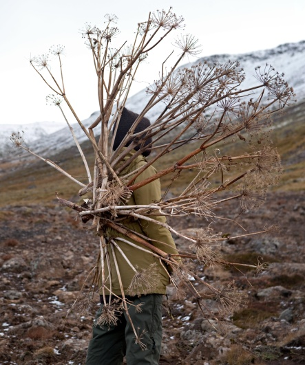 Eyes as Big as Plates # Svana (Iceland 2013) © Karoline Hjorth & Riitta Ikonen
